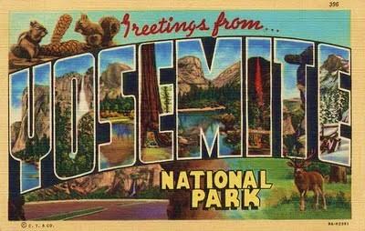 Yosemite National Park Vintage Post Card